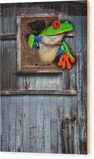Wood Print featuring the photograph Hello World by Harry Spitz
