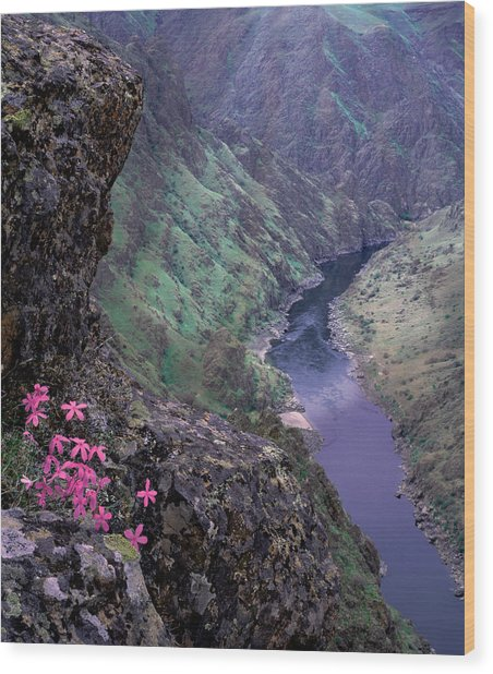 Hells Canyon Wood Print