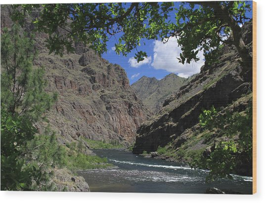Hells Canyon Snake River Wood Print