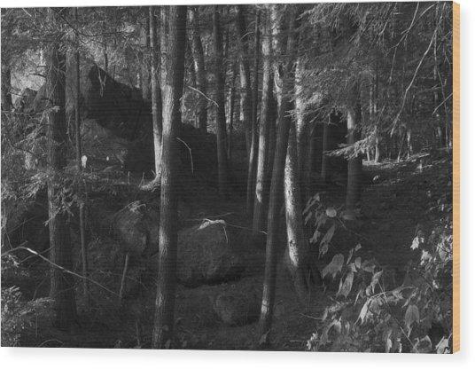 Hemlocks Wood Print