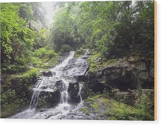 Hen Wallow Falls Great Smoky Mountains National Park Wood Print