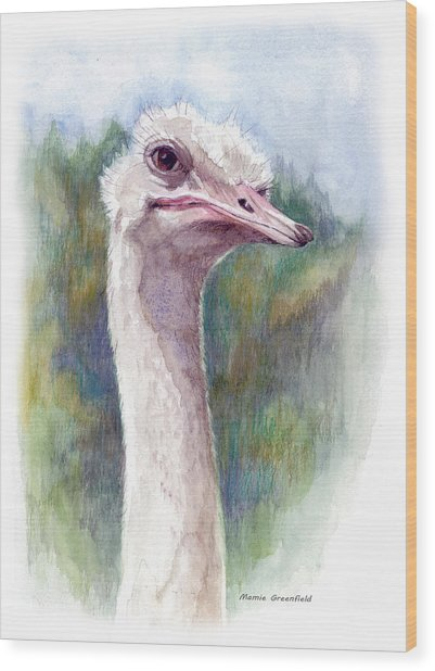 Henry The Ostrich Wood Print