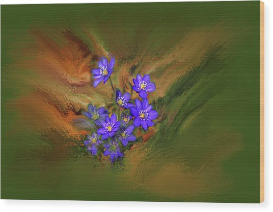 Wood Print featuring the digital art Hepatica Nobilis Painterly #h4 by Leif Sohlman