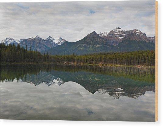 Herbert Lake Reflections  Wood Print by George Oze