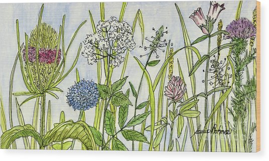 Herbs And Flowers Wood Print