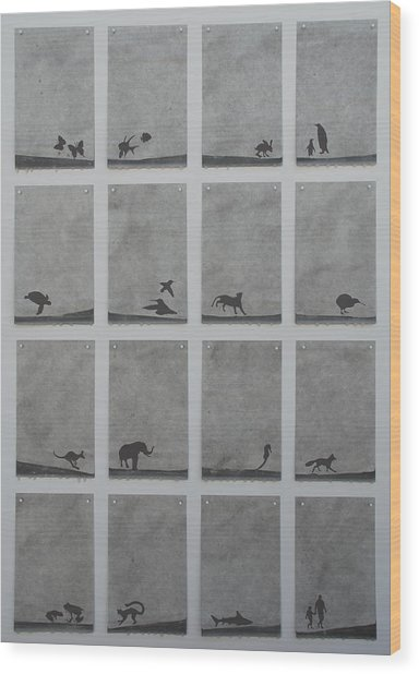 Here Today Gone Tomorrow Wood Print by Elizabeth Comay