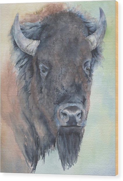 Here's Looking At You - Bison Wood Print