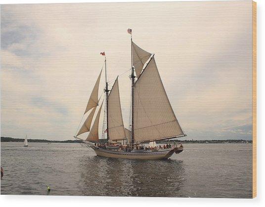 Heritage In Penobscot Bay Wood Print