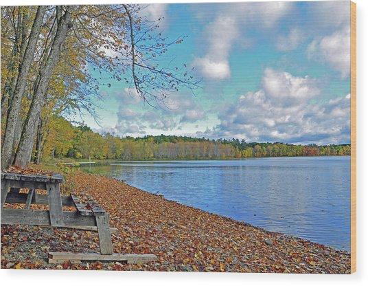 Fall Picnic In Maine Wood Print