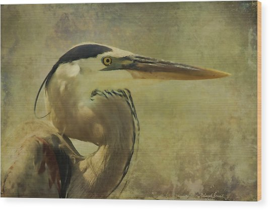 Heron On Texture Wood Print