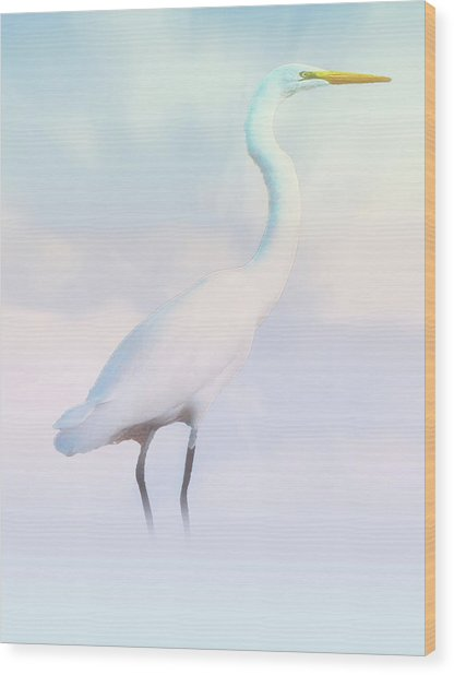 Heron Or Egret Stance Wood Print