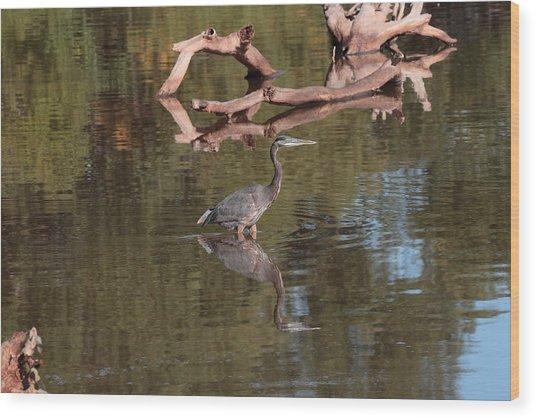 Heron Reflection Wood Print