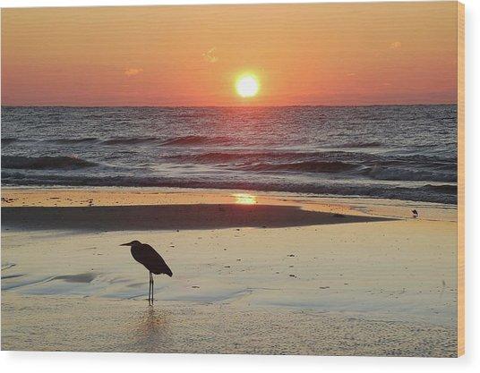 Heron Watching Sunrise Wood Print