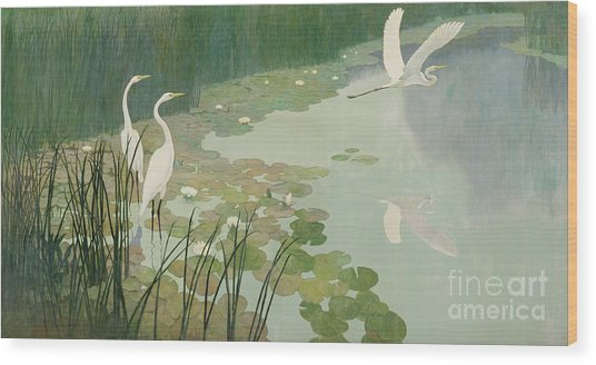 Herons In Summer Wood Print