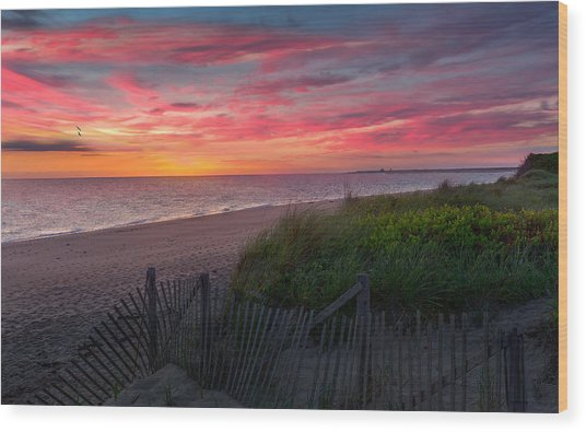 Herring Cove Beach Sunset Wood Print