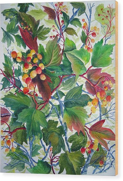 Hi-bush Cranberries Wood Print