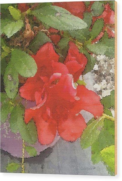 Hibiscus B Wood Print