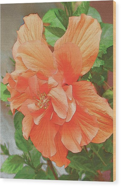 Hibiscus Flower Wood Print