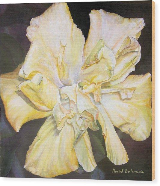 Hibiscus Jaune Wood Print by Muriel Dolemieux