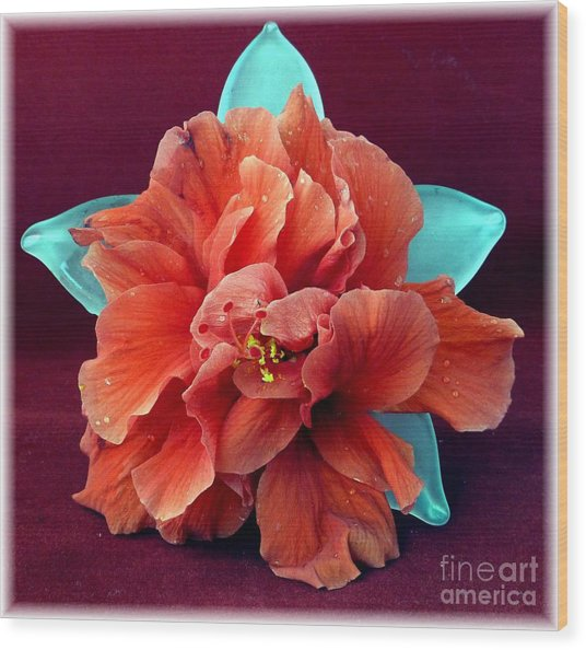 Hibiscus On Glass Wood Print