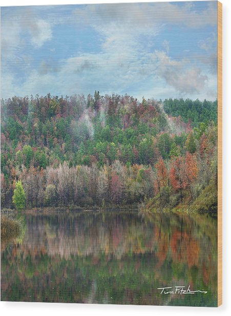 Hickory Forest Wood Print