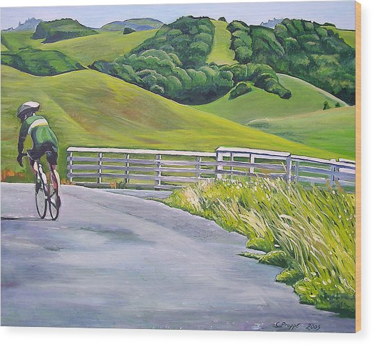 Hicks Valley Bike Ride Wood Print by Colleen Proppe