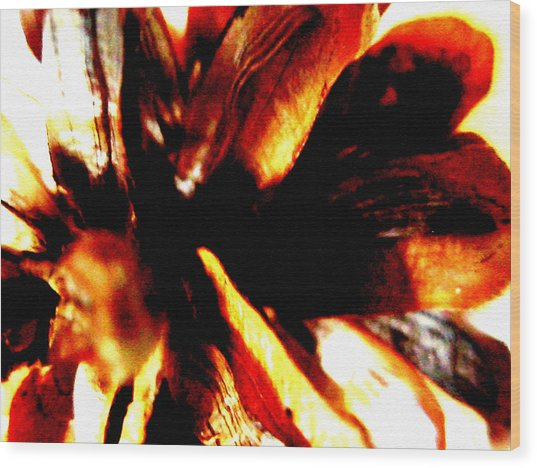 Hidden Image In Abstract Pinecone Wood Print