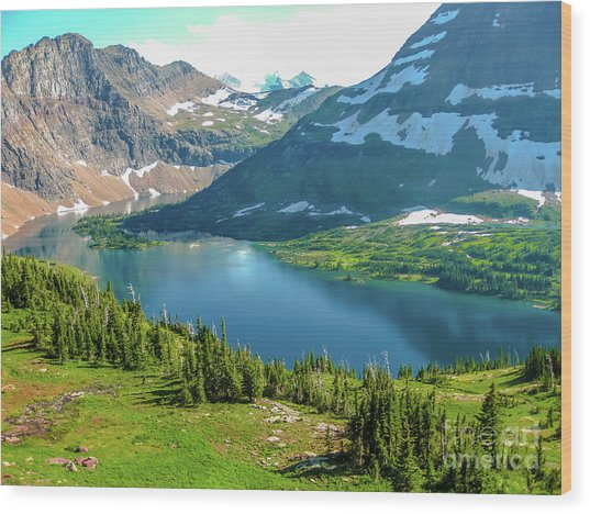 Hidden Lake Glacier National Park Wood Print