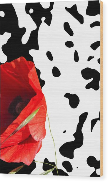 Hidden Poppy Wood Print by Martine Affre Eisenlohr