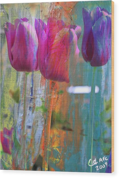 Hidden Tulips Wood Print by  Cid