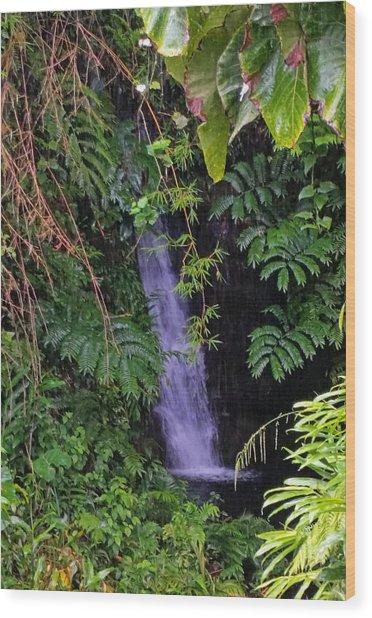 Small Hidden Waterfall  Wood Print
