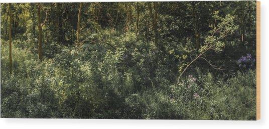 Hidden Wildflowers Wood Print