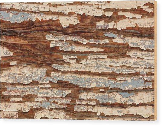 Wood Print featuring the photograph Hidden Wonders 2 by Stuart Gordon