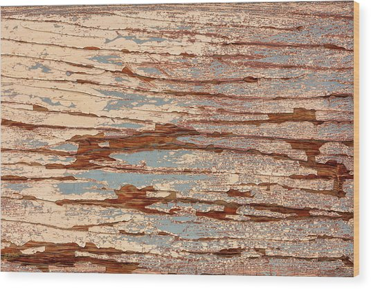 Wood Print featuring the photograph Hidden Wonders 4 by Stuart Gordon