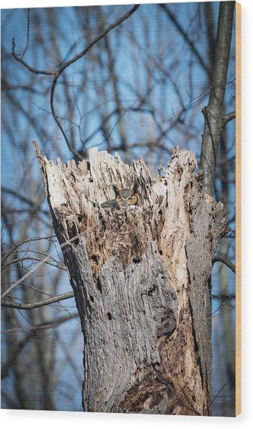 Hide And Seek Wood Print by Becca Braskie