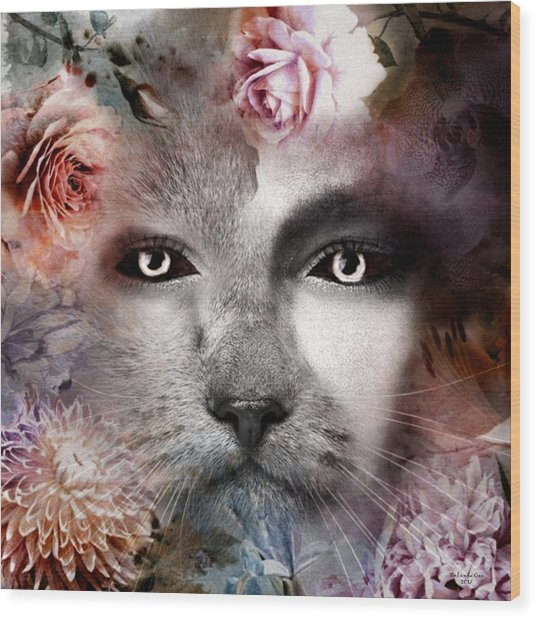 Hiding Catlady Wood Print