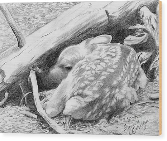 Hiding In Plain Sight - White Tail Deer Fawn Wood Print