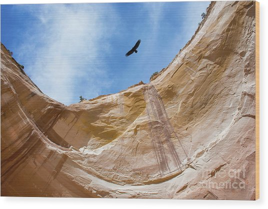 High Above Echo Amphitheater Wood Print