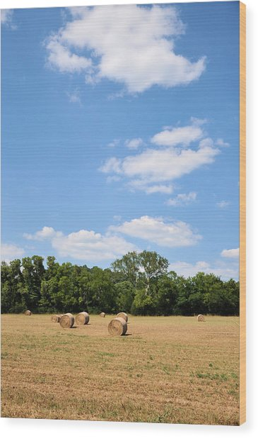 High As The Sky Wood Print by Jan Amiss Photography