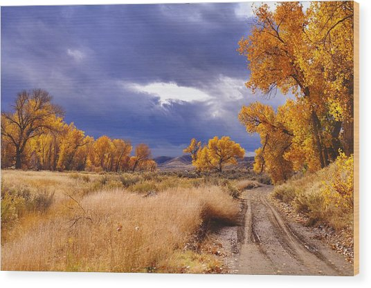High Desert Autumn II Wood Print by SB Sullivan