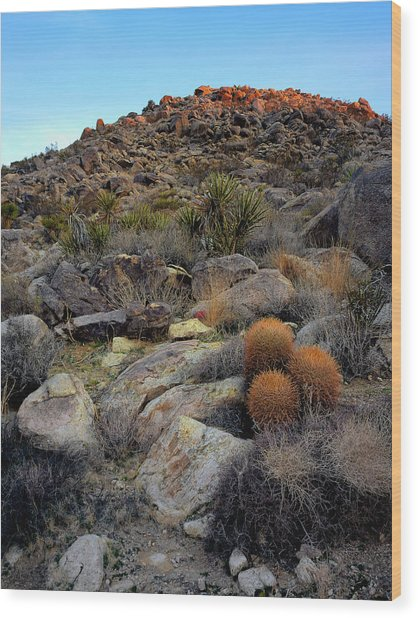 High Desert Garden Wood Print