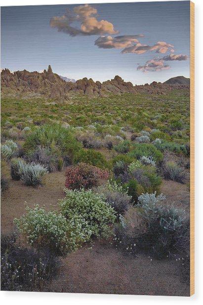 High Desert Hues Wood Print