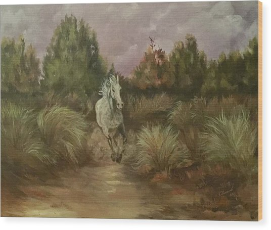 High Desert Runner Wood Print