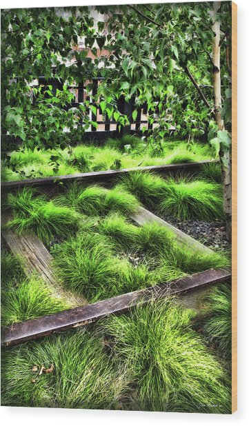 High Line Nyc Railroad Tracks Wood Print