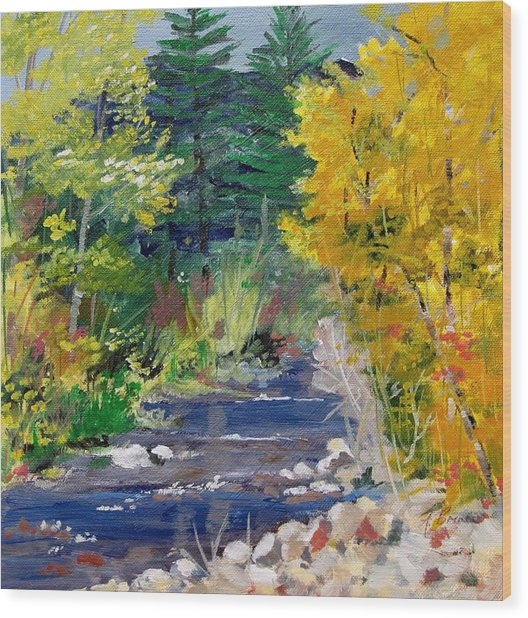 High Mountain Creek  Wood Print