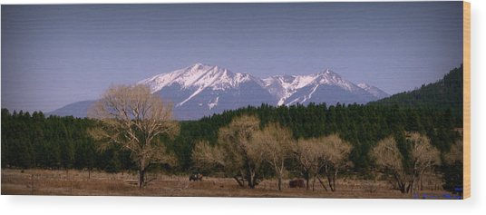 High Peaks Of Arizona Wood Print