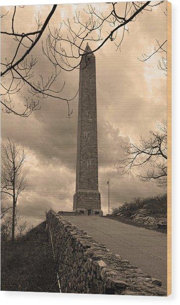 High Point Obelisk In Sepia  Wood Print