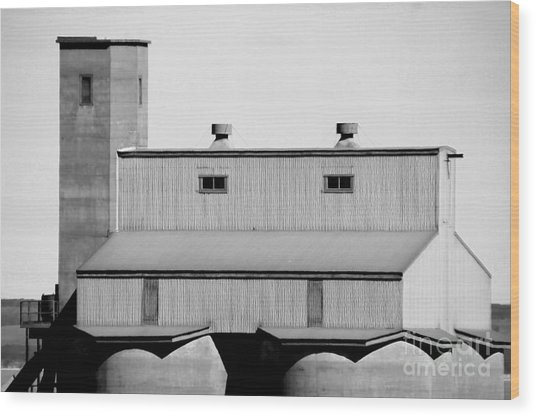 Wood Print featuring the photograph High Rise by Stephen Mitchell