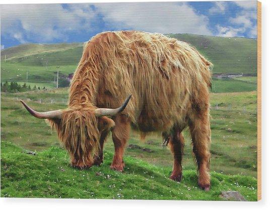 Highland Cow Wood Print