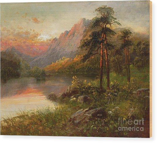 Highland Solitude Wood Print